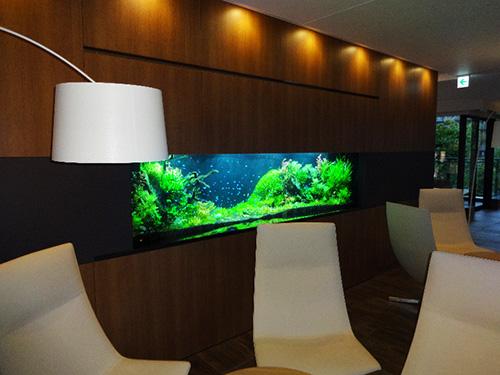 2階の共有スペースには熱帯魚の水槽が設置されており、行きかう交う人々を和ませている。