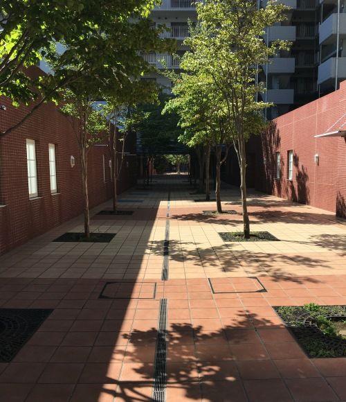 マンション内には歩行者専用のメインストリートがあり、安心して歩かせることができる。「都内のマンションではこうした贅沢な空間は見られませんでした。子どもの遊び場になっています」。