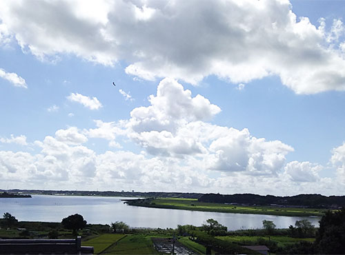 ベランダに出れば、公園と手賀沼を臨む眺望をいつでも楽しめる。「朝、窓を開けて公園を眺めるのが日課です。元旦には、日の出を真正面から楽しめて感動しました」。